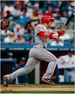 Mike Trout Los Angeles Angels Baseball 8x10 Photo 2